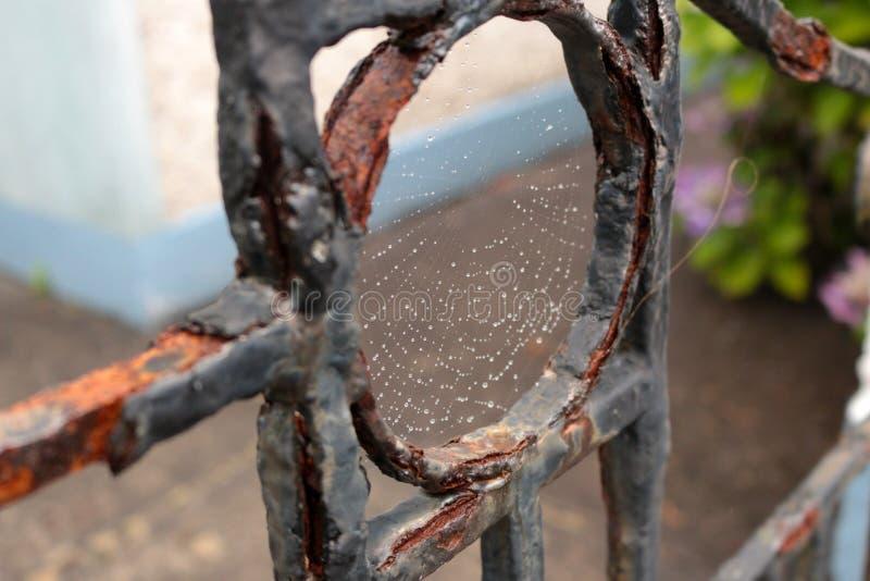 Rustieke Omheining met Spiderweb royalty-vrije stock fotografie