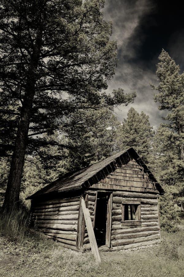 Rustieke oude prospectorscabine in de verre bergen van Idaho stock afbeelding