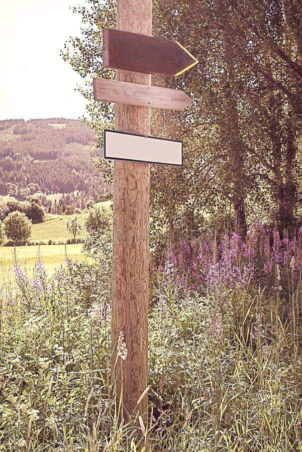 Rustieke, ouderwetse met de hand gemaakte lege eenvoudige pijl houten tekens op een houten pool met wildflowers en landelijke ach stock afbeelding