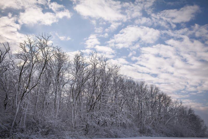 Rustig de Wintersprookjesland stock foto