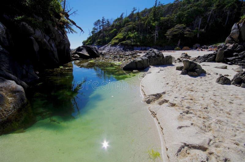 Rustige groene getijdenpool in de de zomerzon tussen twee eilanden op de Britse centrale kust van Colombia ` s stock afbeelding