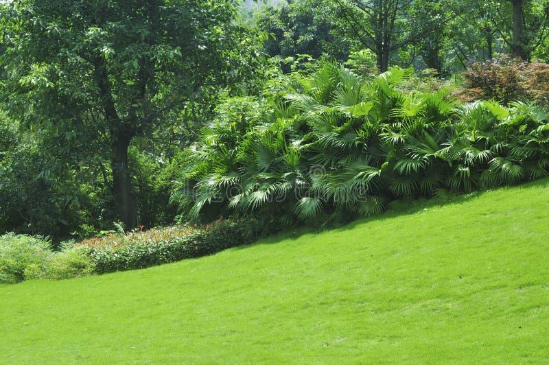Rustige Tuin stock fotografie