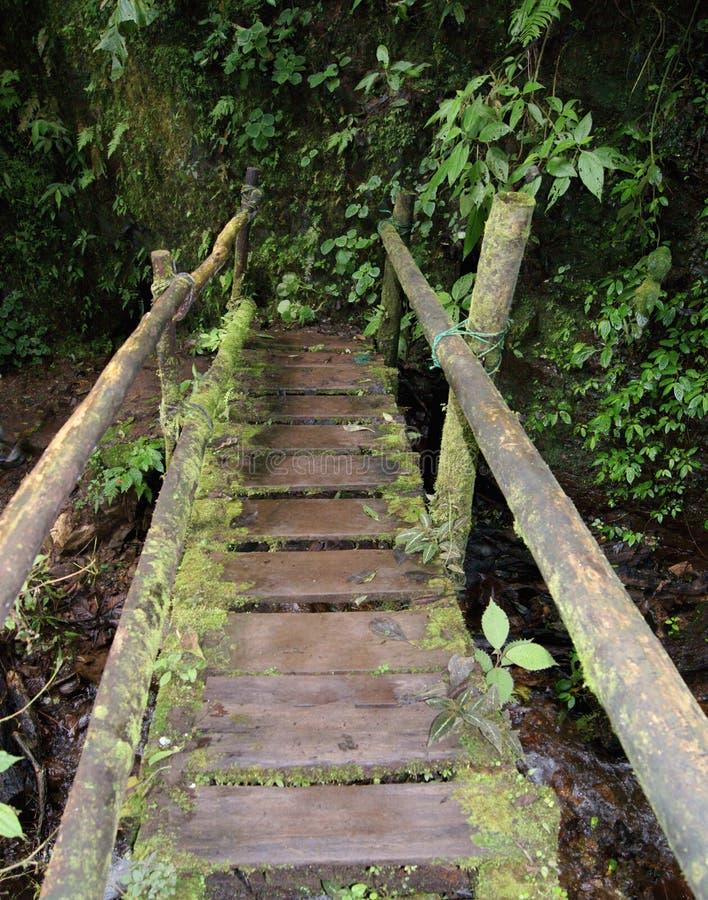 Rustikale Brücke stockfotografie