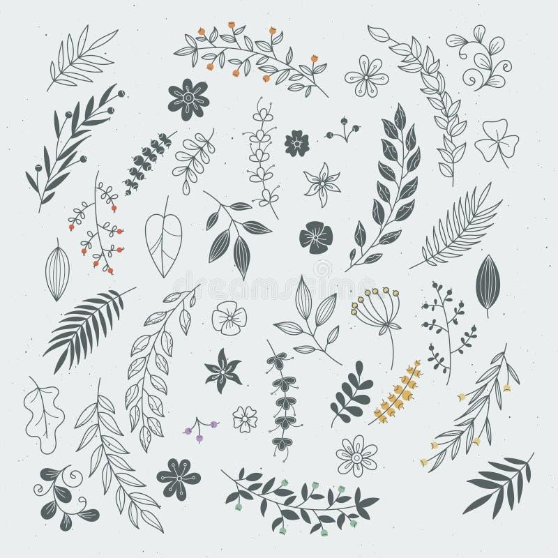 Rustikale Hand gezeichnete Verzierungen mit Niederlassungen und Blättern Vektorblumenrahmen und -grenzen stock abbildung