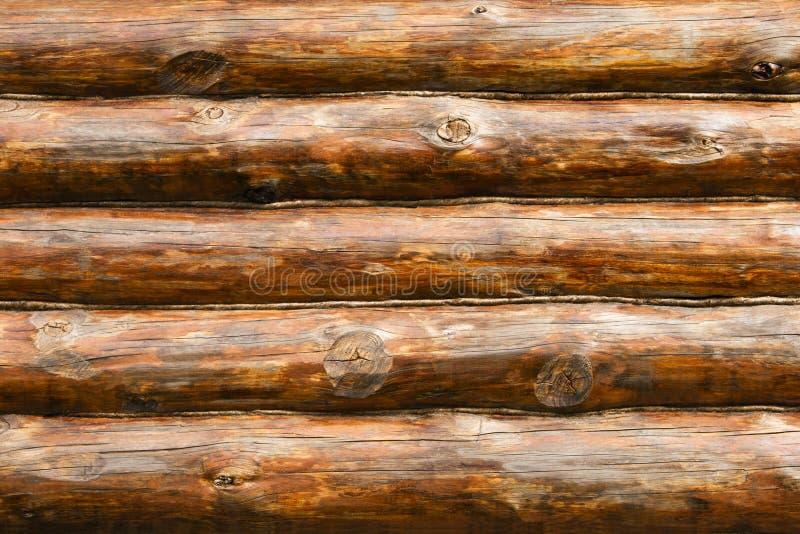 Rustikale Kiefer-Protokoll-Kabine-Wand lizenzfreie stockfotos
