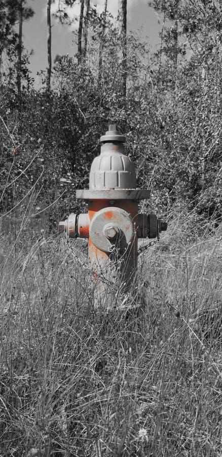 Rustikaler Hydrant stockfotos