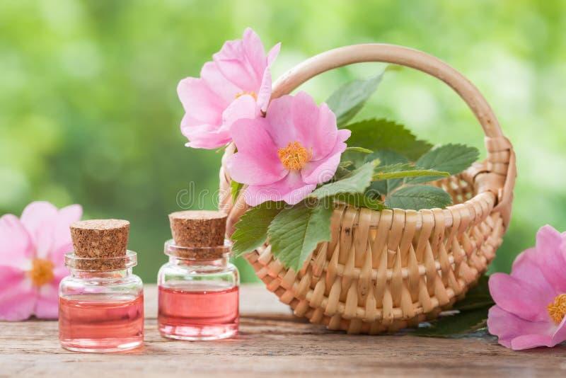 Rustikaler Weidenkorb mit Hagebutteblumen und Flaschen Öl lizenzfreie stockfotografie