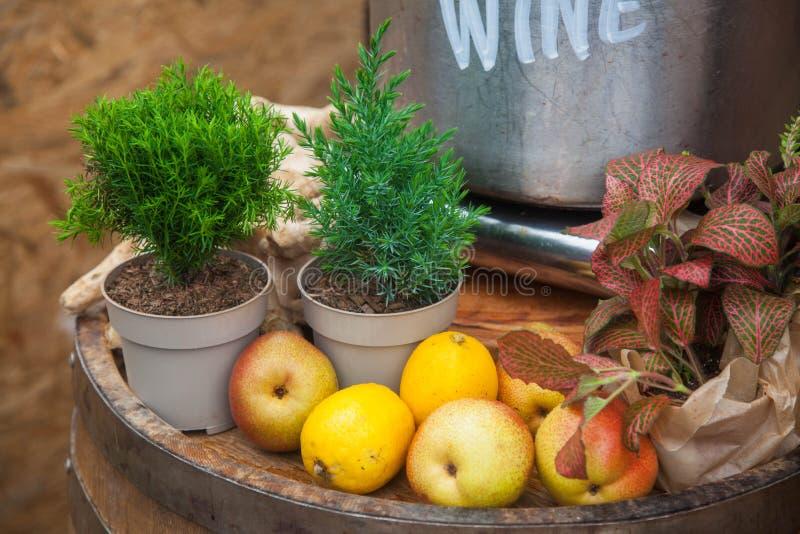 Rustikales Fruchtstillleben stockbild