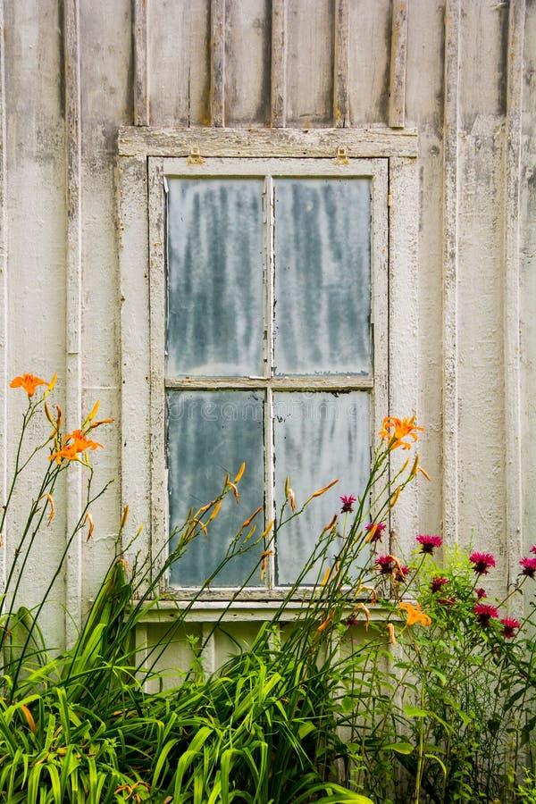 Rustikales Gebäude mit einem verwitterten alten Fenster und orange Blumen in der Front, am takonischen Nationalpark stockbilder