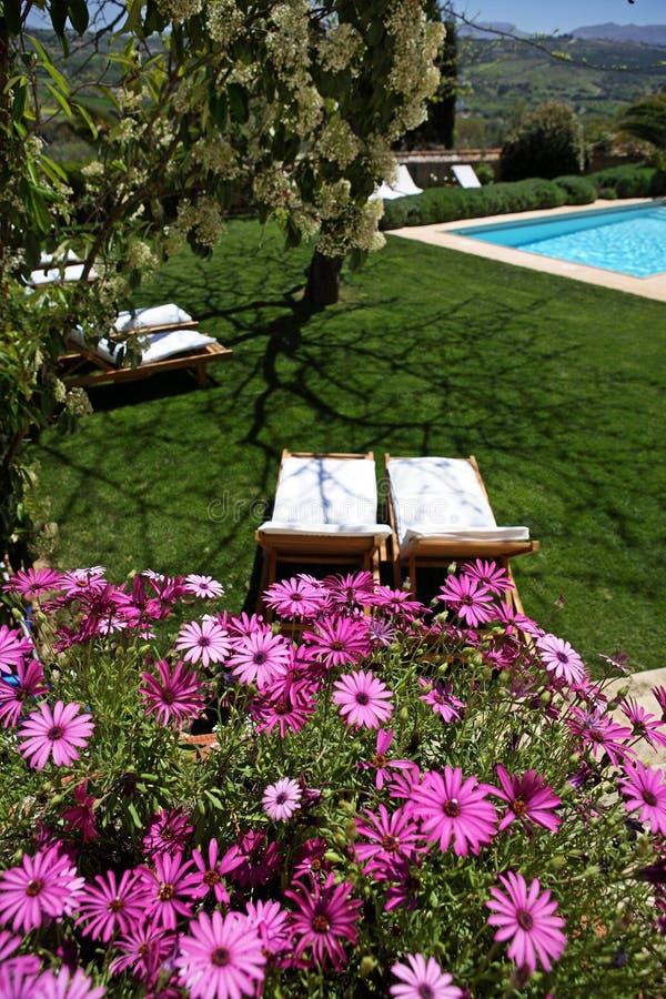 Rustikales Luxuxhotel und Swimmingpool in der Landschaft stockbild