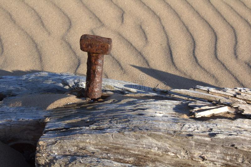 A rusting bolt in a decaying wooden beam. royalty free stock photography
