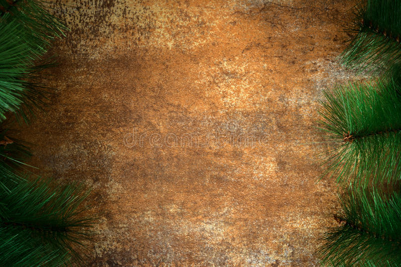Rusty background. Rusty texture background and fir branches. Horizontal photo royalty free stock image