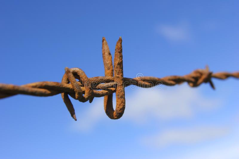 Download Rusty Barbed Wire stock image. Image of tetanus, steers - 643213