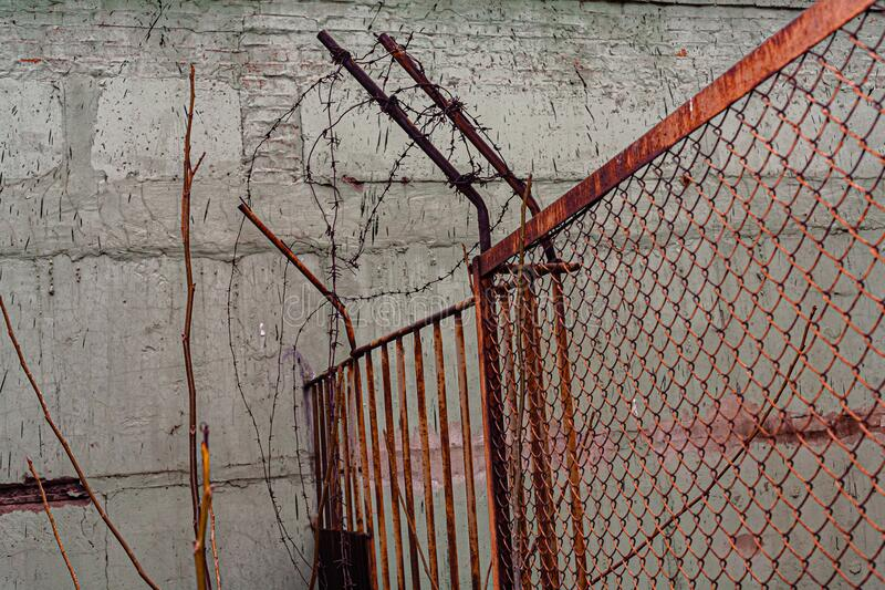 Rusty barbed wire on the fence.  royalty free stock photo