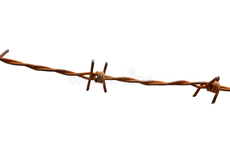 Rusty barbed wire fence on white background with clipping path stock photography