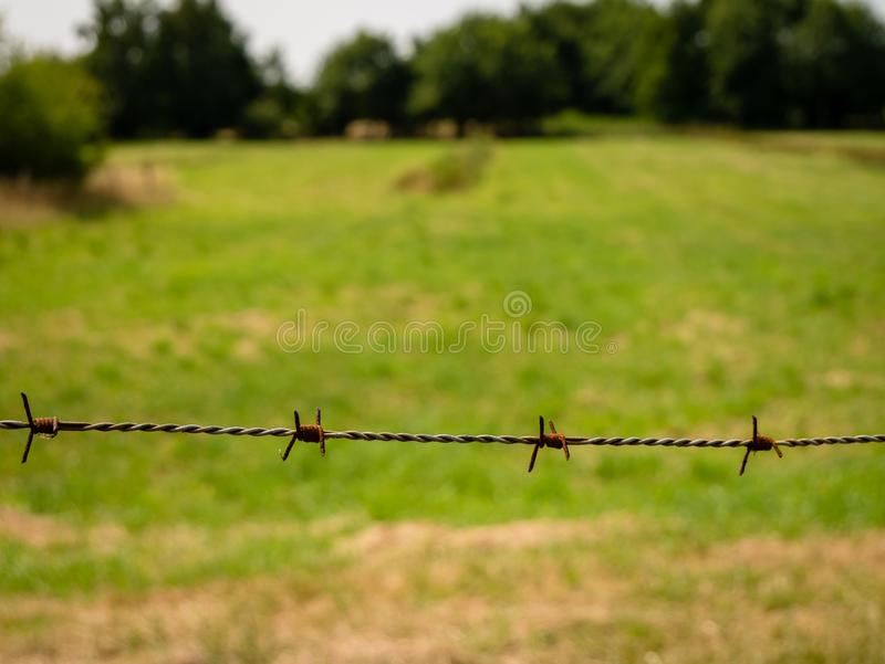Rusty barbwire and meadow and trees in blurry background. stock photo