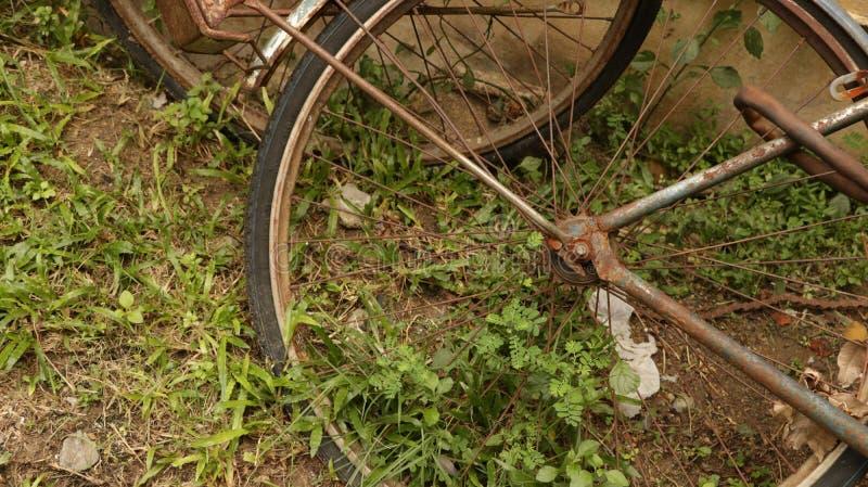 Rusty Bicycle Wheel in giardino d'annata immagini stock libere da diritti