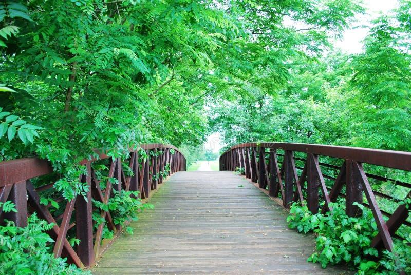 Download Rusty bridge stock photo. Image of misty, american, reflections - 26471388