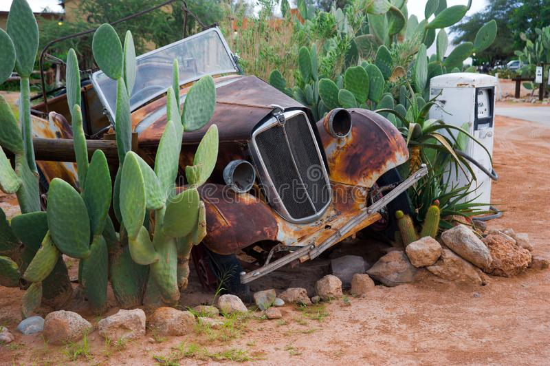 Rusty car as garden decoration between cacti in Namibia royalty free stock photo