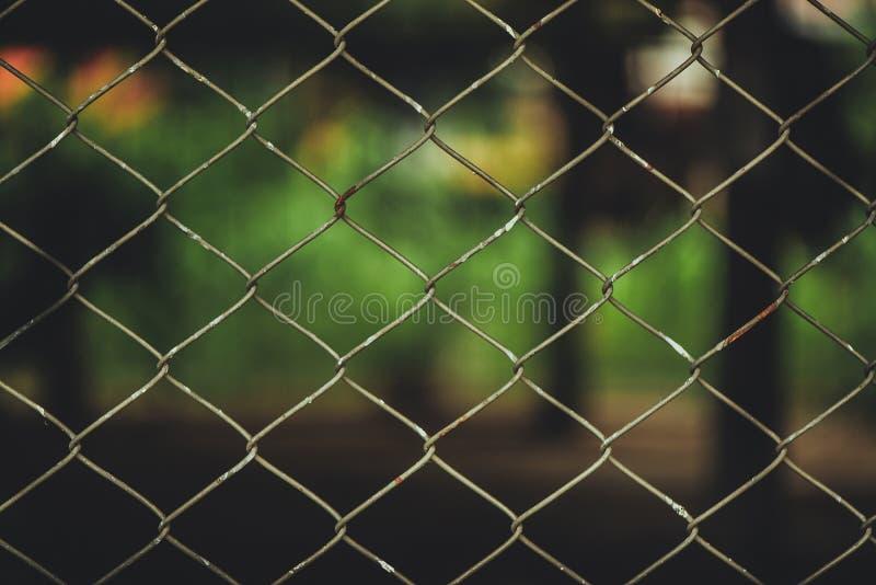 Rusty Chain Link Fence del reticolato d'acciaio sul fondo della sfuocatura immagine stock