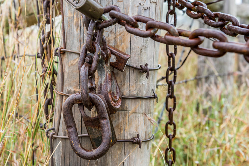 Rusty chain and lock on fense post. In field of long grass stock photography