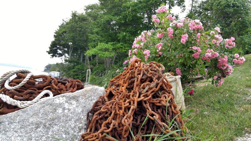 Rusty Chain y flores en el puerto deportivo foto de archivo