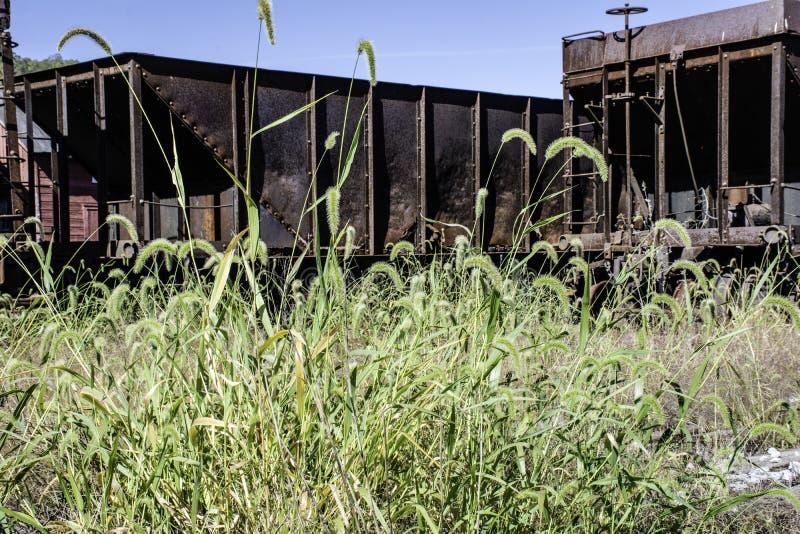 Rusty Coal Cars stock image