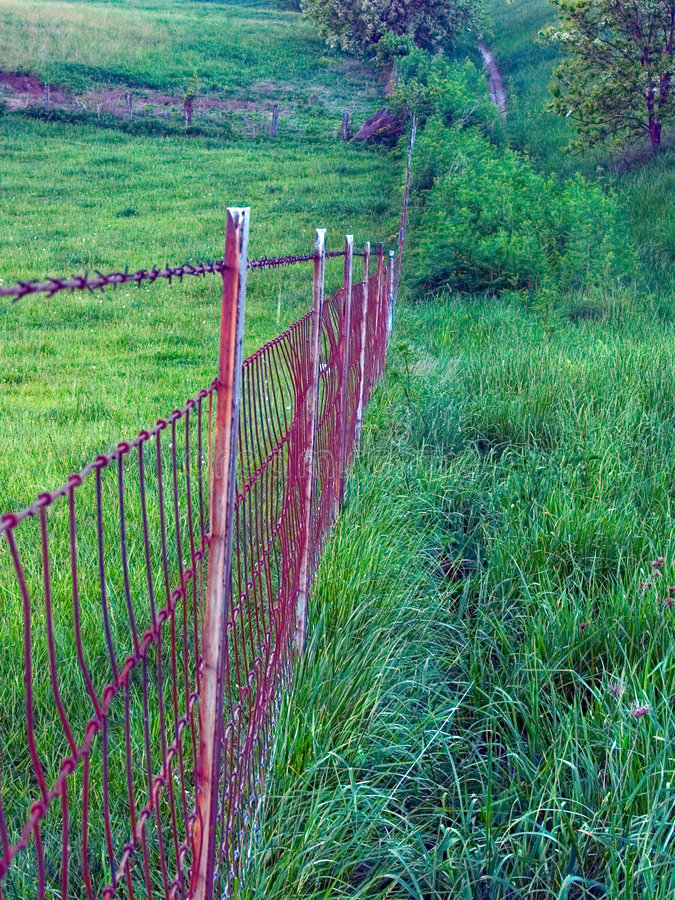 Rusty fence in green pasture royalty free stock images