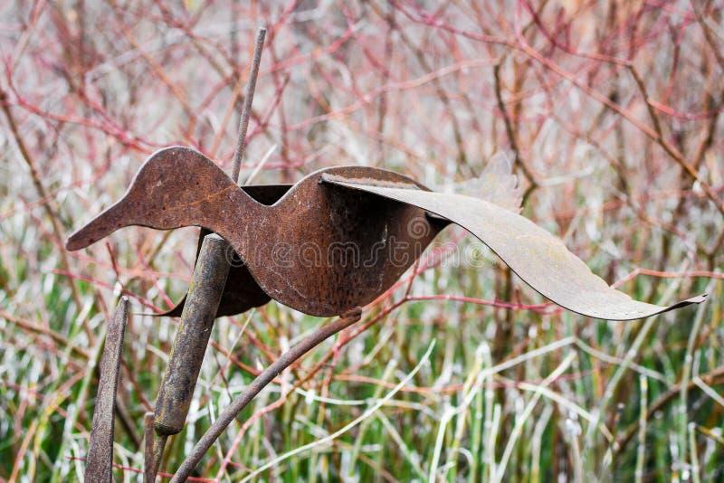 Rusty Goose Statue i trädgård fotografering för bildbyråer