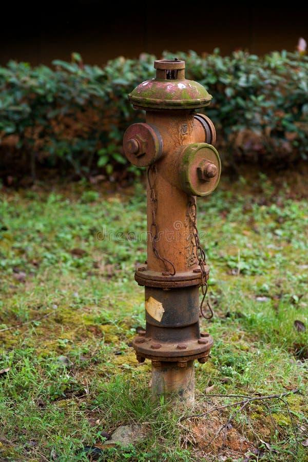rusty hydrant zdjęcia stock