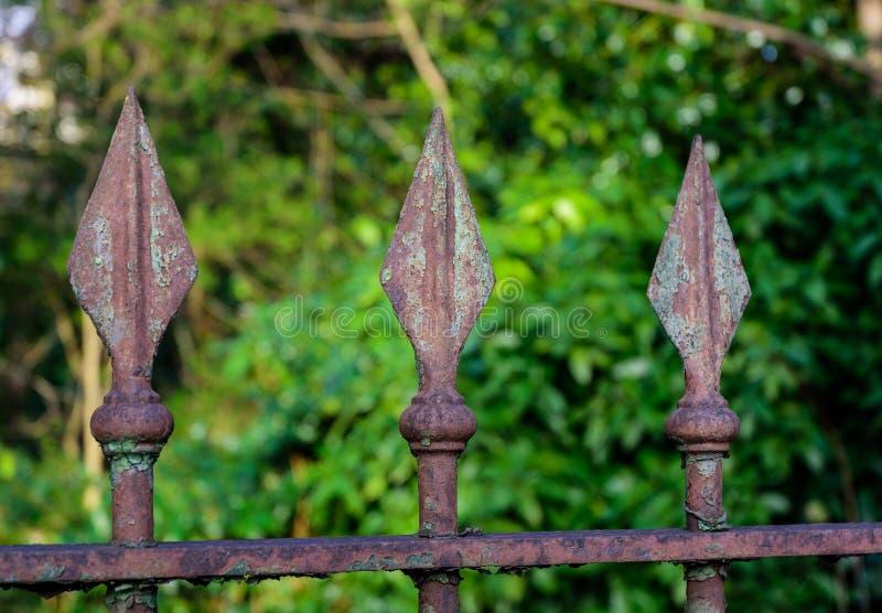 Rusty Iron Spikes stock afbeelding