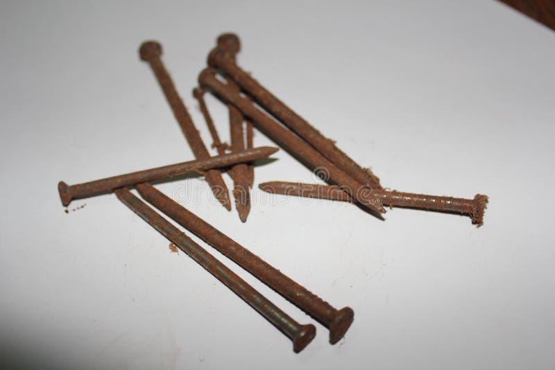Rusty nail stock photography