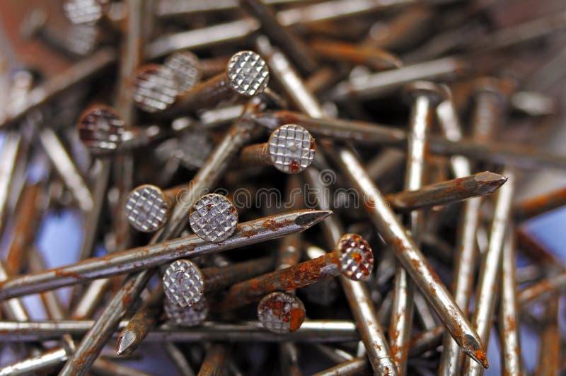 Rusty nails stock image