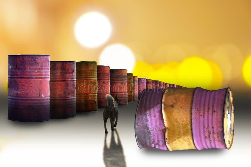 Rusty oil barrels and stray dog. Row of rusty oil barrels and stray dog casting shadow royalty free stock photo