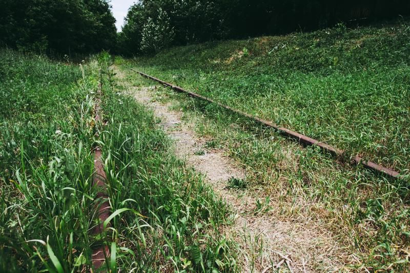 rusty rails and wooden sleepers in green grass royalty free stock photography