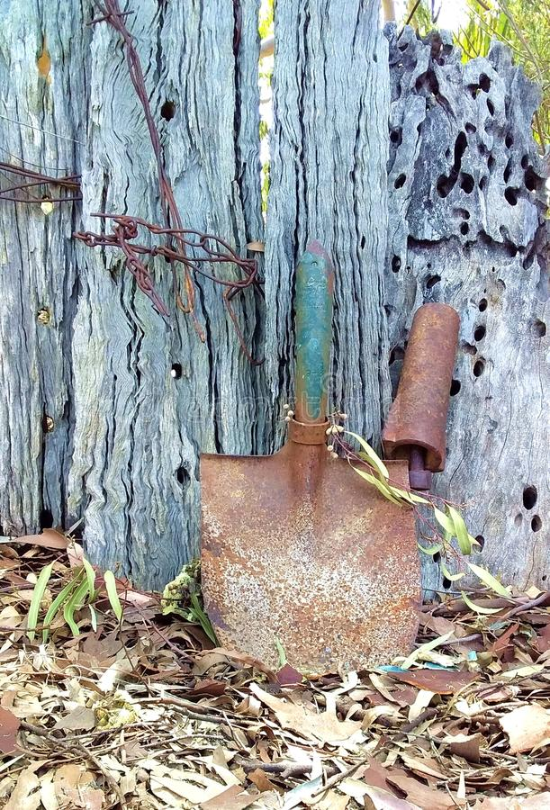 Rusty Shovel Head Beside Old Fence. The rusty shovel has lost its handle and is leaning against the old wooden fence. There is wire stuck to the old fence as stock photo