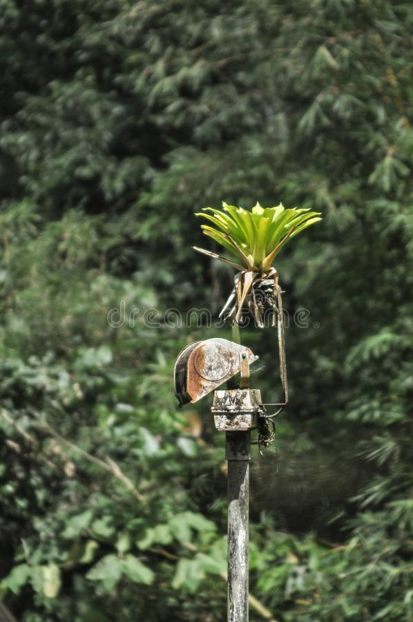 Rusty surveillance spotlight in a abandoned jungle setting royalty free stock photo