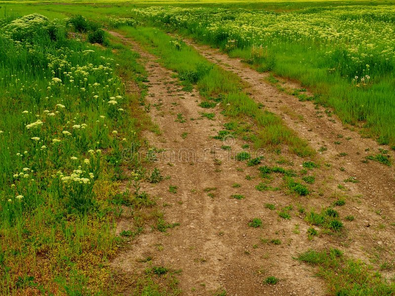 Rut-filled dirt road or path through meadow royalty free stock photography