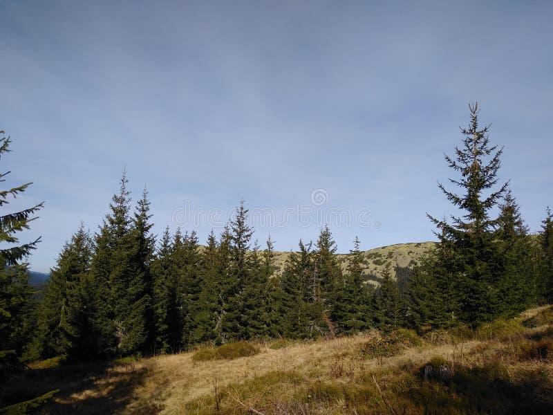 Ruta de la montaña para montar Sinyak de Bukovel Gorgany, Cárpatos ucranianos imagenes de archivo