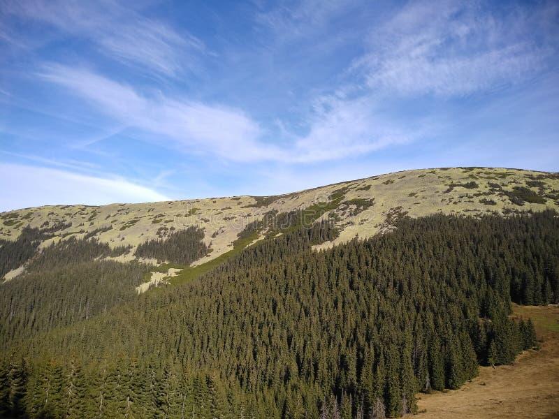 Ruta de la montaña para montar Sinyak de Bukovel Gorgany, Cárpatos ucranianos fotografía de archivo