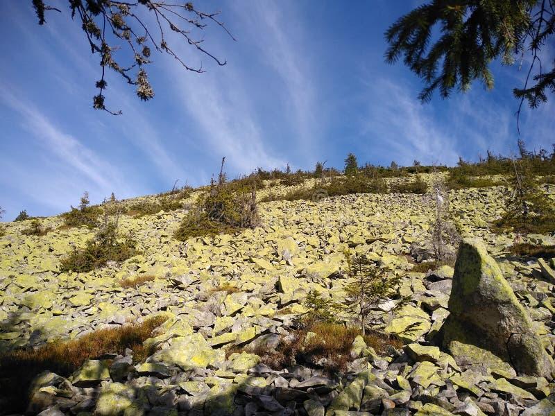 Ruta de la montaña para montar Sinyak de Bukovel Gorgany, Cárpatos ucranianos imagen de archivo