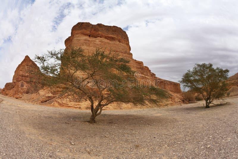 Ruta turística en el yermo de la roca. foto de archivo
