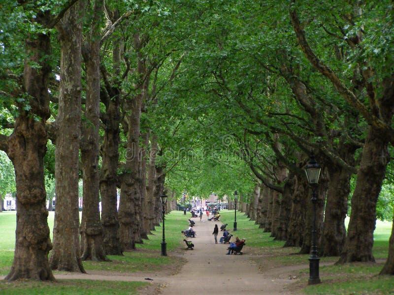 Ruta verde en Londres imagen de archivo libre de regalías