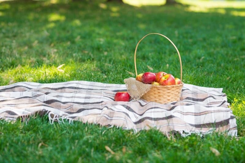 Rutig sommar Tid för grönt gräs för frukt för korgen för plädpicknickäpplen vilar format för begrepp för bakgrundsdesignrengöring royaltyfria bilder