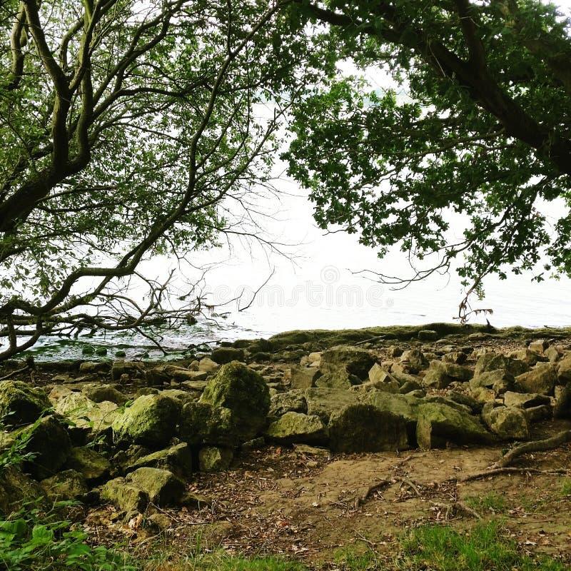 Rutland vatten royaltyfri foto