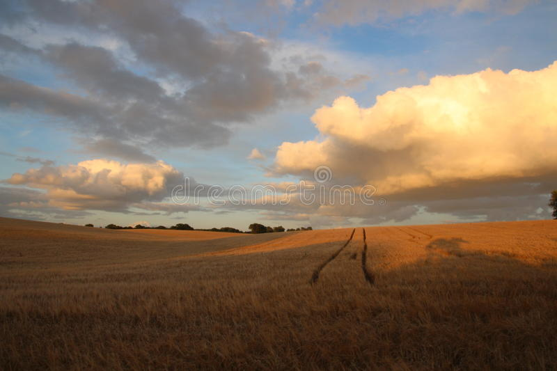 The ruts to the skies. Before sunset stock photo