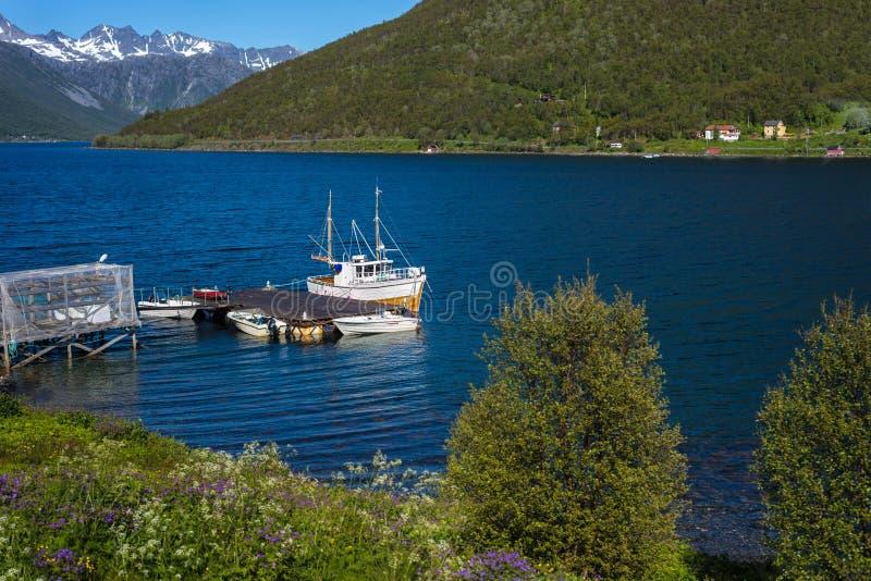Rutt 862 i Troms, nordliga Norge fotografering för bildbyråer