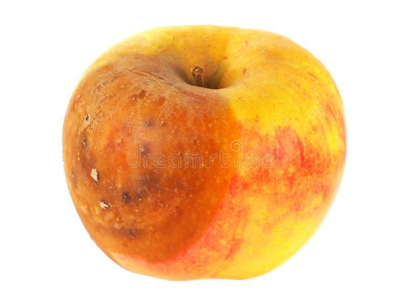 ruttet äpple royaltyfri foto