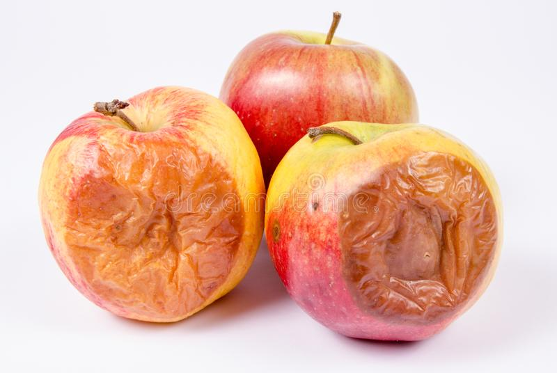 Ruttet äpple på en vit bakgrund arkivfoto