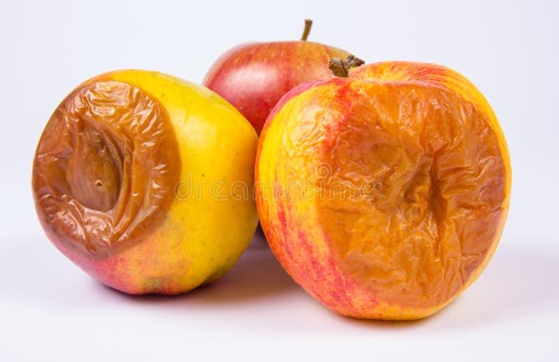 Ruttet äpple på en vit bakgrund arkivbilder